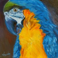 cat-call-parrot-painting-malowany