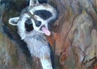 Bandit Yawn