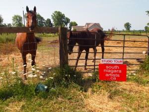 horses-studio-tour