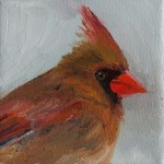 """Winter Female Cardinal"" (almost finished) oil on canvas, 4""x4"""