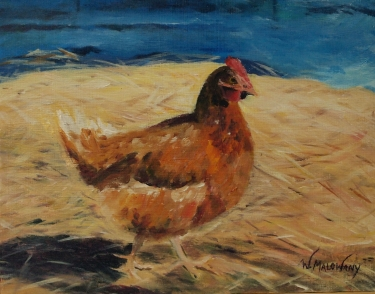 Hen Stroll - Home Gallery