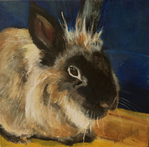 benjamin-rabbit-painting-malowany