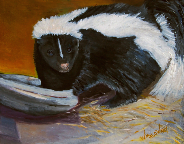 skunk-painting-malowany