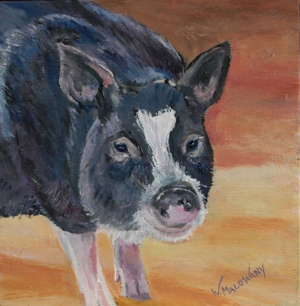 pot-bellypig-painting-malowany