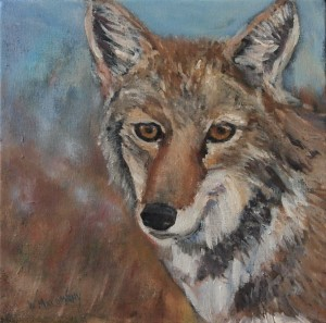 coyote-painting-malowany