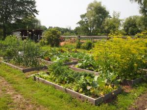 garden-malowany-farm