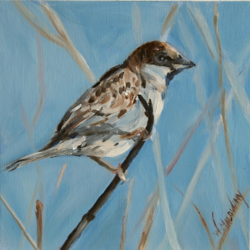 bird-sparrow-oil-painting-malowany