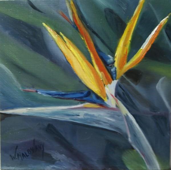 bird-of-paradise-painting-malowany
