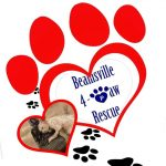 beamsville 4paw rescue logo