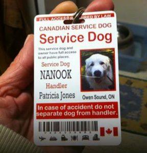 nanook-service -tag