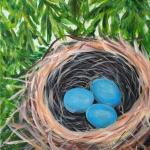 Hidden Robin Nest